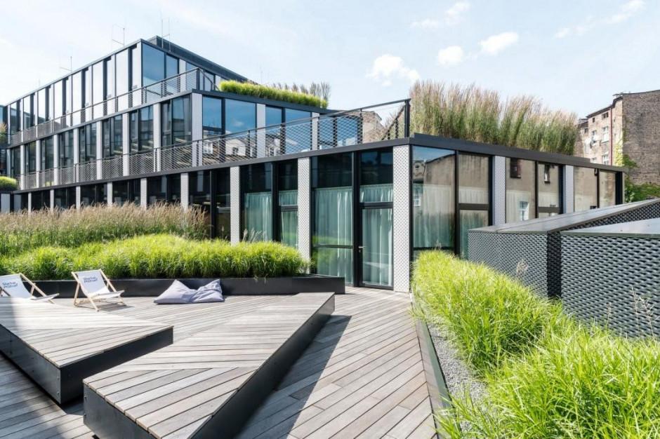 Poznań będzie wspierać tworzenie zielonych dachów i elewacji