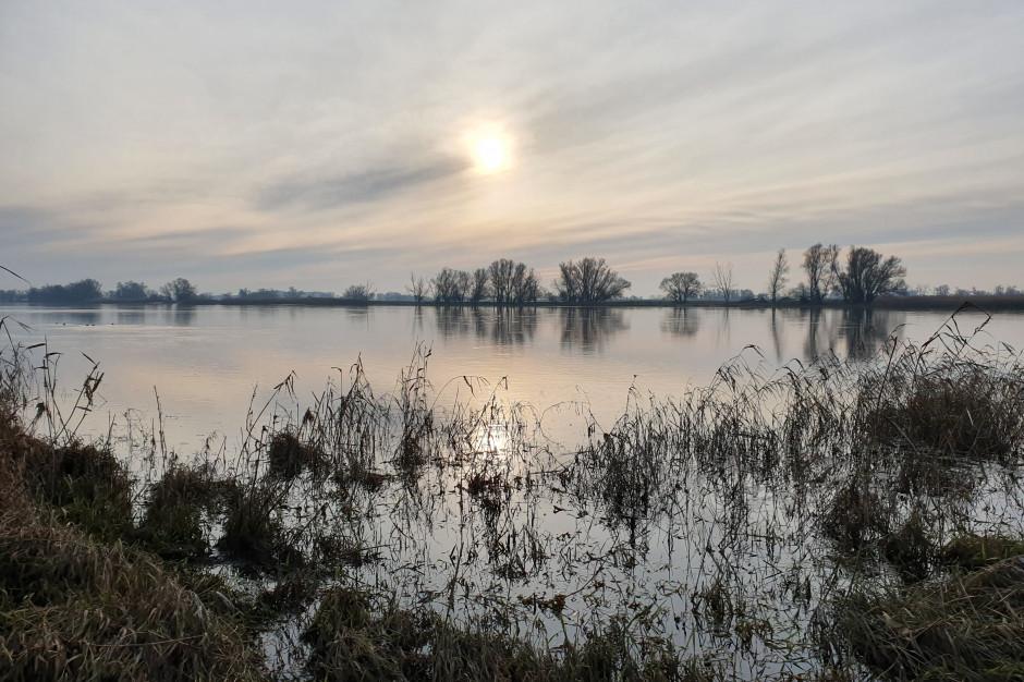 Odra bezpieczna i atrakcyjna gospodarczo. Wody Polskie realizują ważne inwestycje