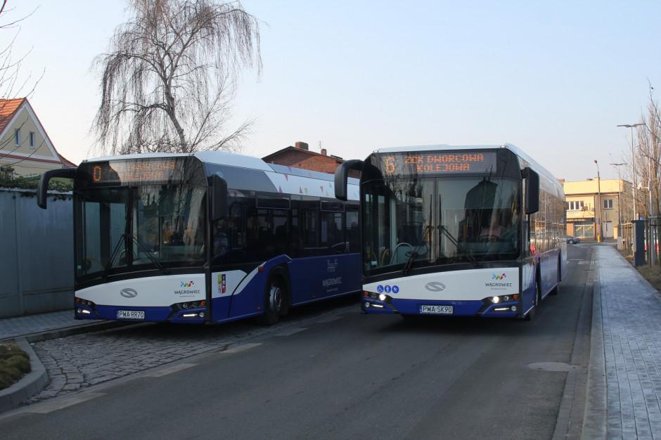 Kołobrzeg kupi hybrydowe autobusy. Pomogą środki unijne