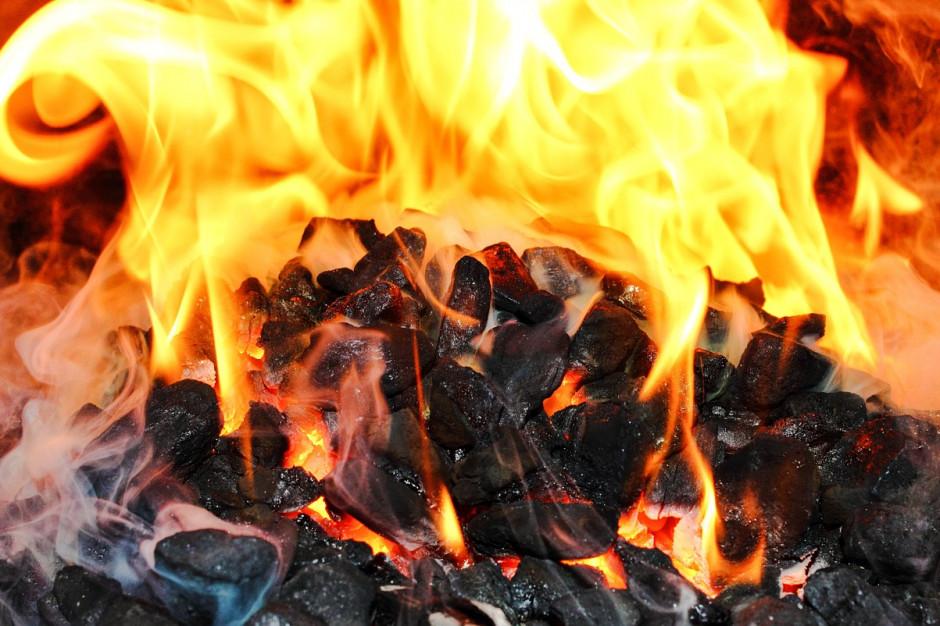 Zakaz stosowania węgla w domowych paleniskach w 2030: taki wariant proponuje Piotr Woźny