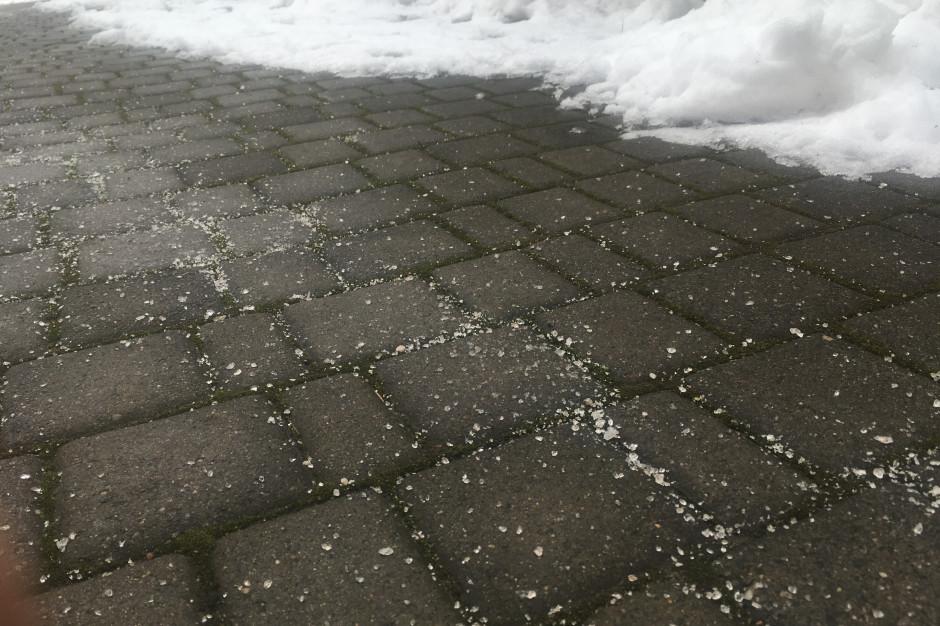 Paradoks cieplejszych zim: bez soli nie da rady