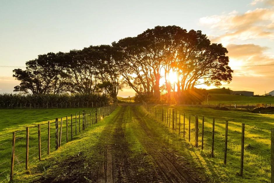Finansowanie samorządów wiejskich trzeba zwiększyć. Głosy teoretyków i praktyków
