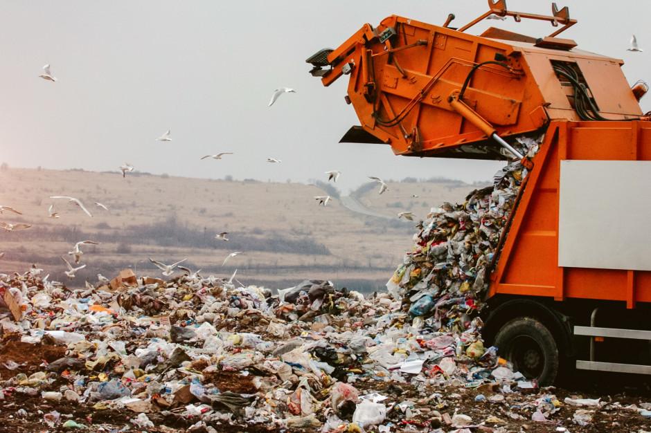 Większe kary za przestępstwa przeciwko środowisku