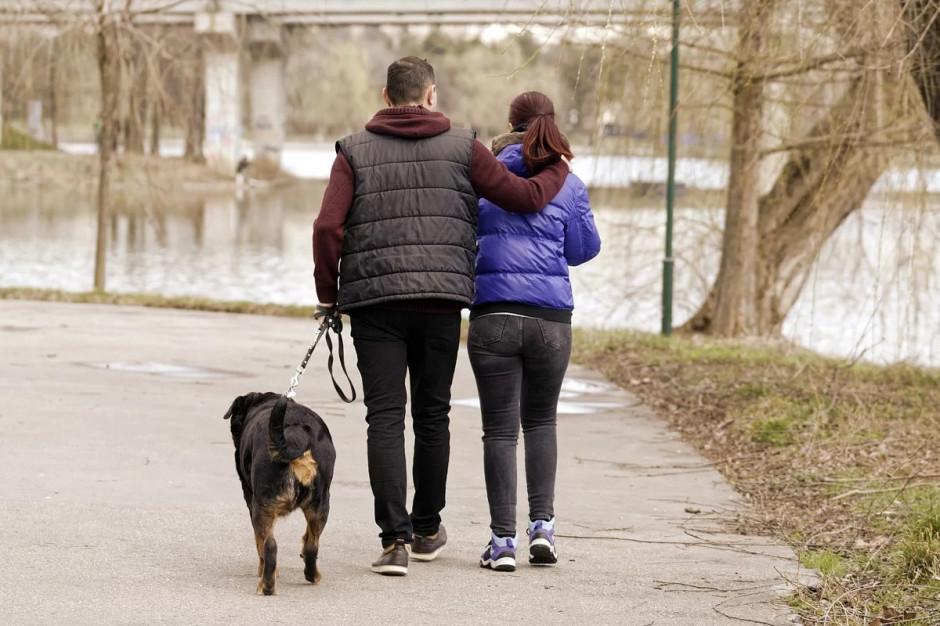 Nakaz zakładania psom smyczy nie dla wszystkich gmin. Sądy mają różne zdanie