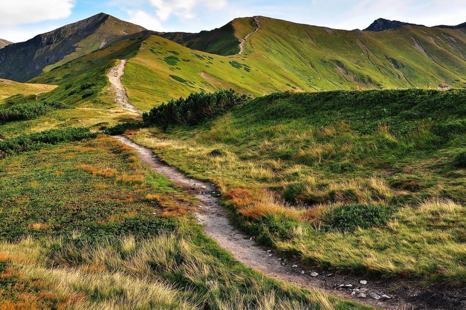 Tatry: Szlaki turystyczne w rejonie Doliny Gąsienicowej będą zamknięte