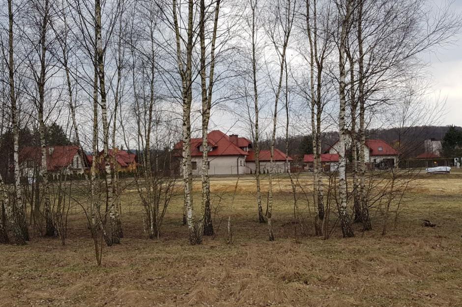 Awantura w Krakowie o wycinkę drzew pod duże inwestycje budowlane