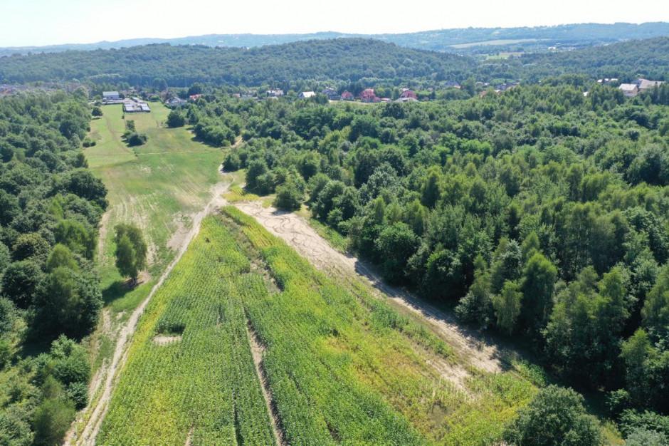 Inwestycje mieszkaniowe, wycinka i park w krakowskich Piaskach Wielkich. Miasto wyjaśnia