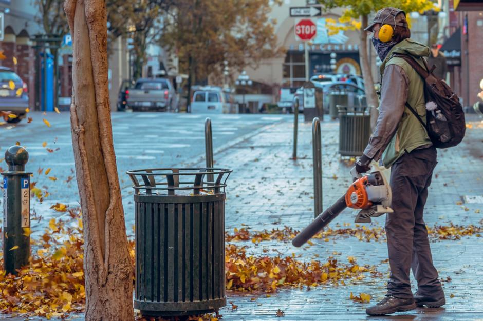 Radni z Łodzi apelują o zakaz używania dmuchaw do liści