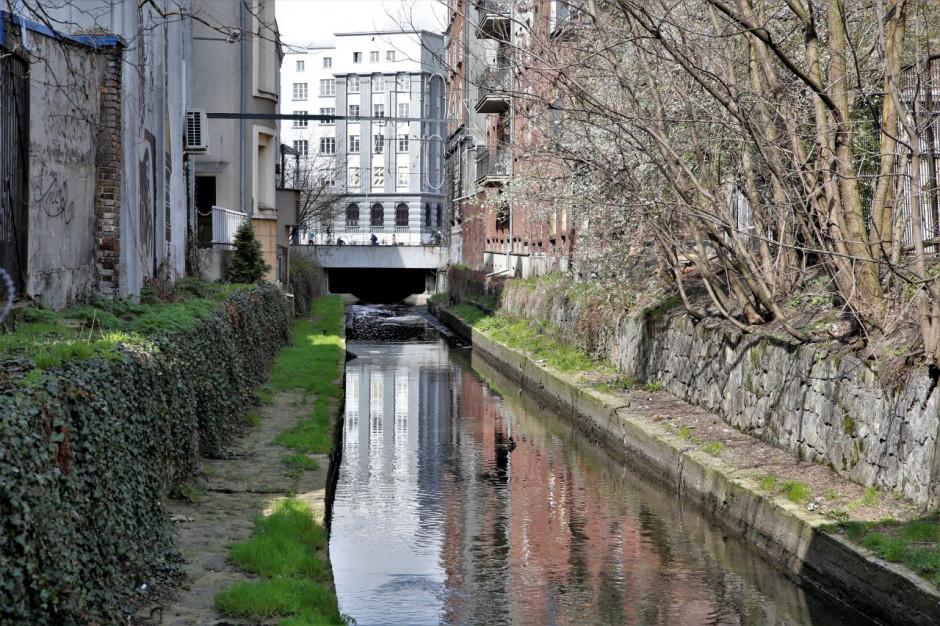 Katowice uporządkowały część koryta rzeki Rawy
