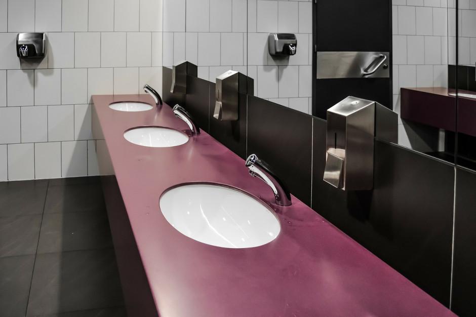 Liczba szkolnych umywalek z podziałem na płeć - to też informacja publiczna