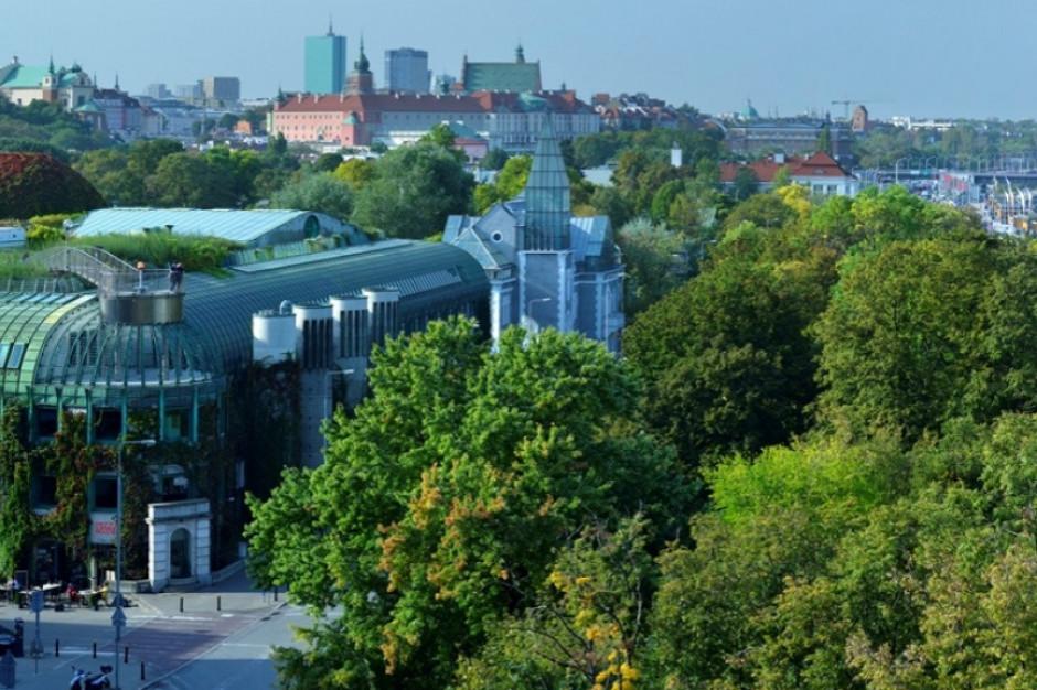 Krajowy Plan Odbudowy szansą na zielone miasta