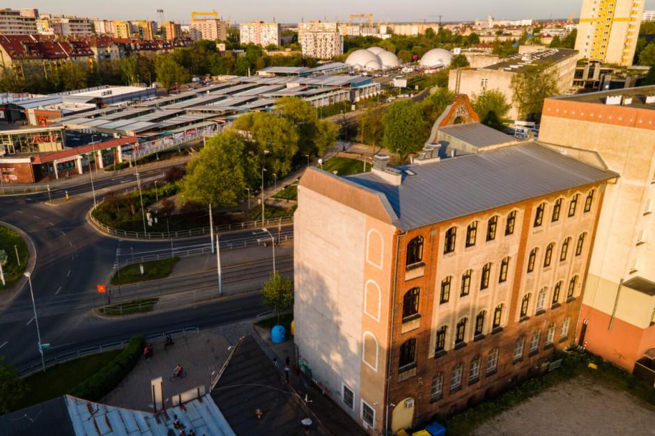 Ekomural zamiast setki drzew. W Szczecinie powstanie ekologiczny malunek
