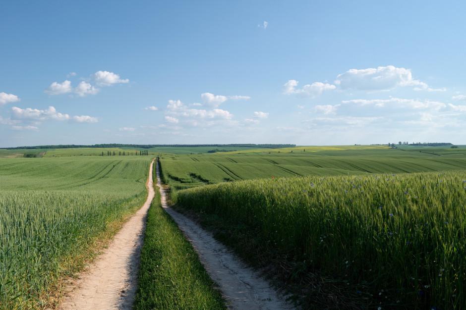 Mazowieckie: Dofinansowanie na drogi do gruntów rolnych i małą retencję