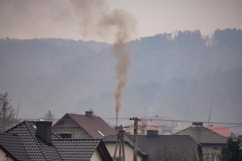 Polska odpowiada za 10 proc. unijnej emisji CO2
