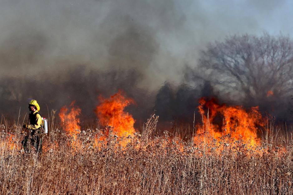 Rośnie zagrożenie pożarowe w Polsce