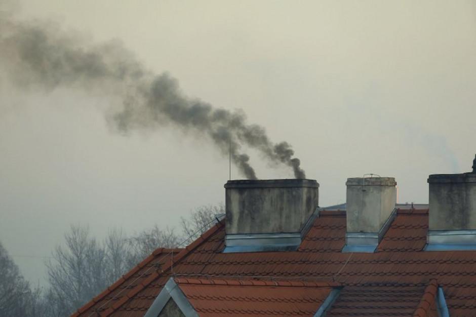 Na ochronę powietrza samorządy w pięć lat wydały 23 mld zł. Zarzuty NIK bezpodstawne?