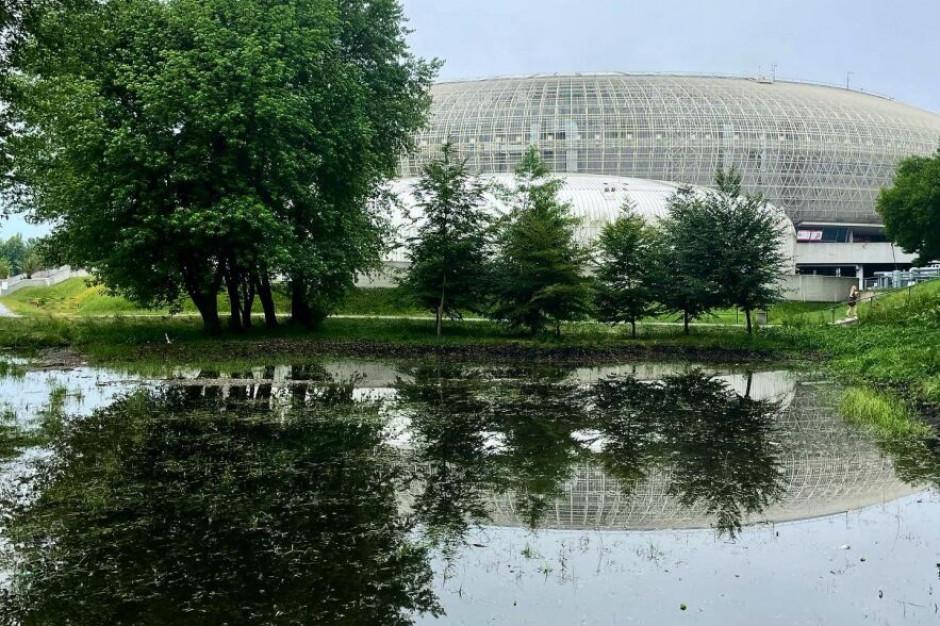 Po nawałnicy napełnił się suchy polder w krakowskim parku Lotników Polskich