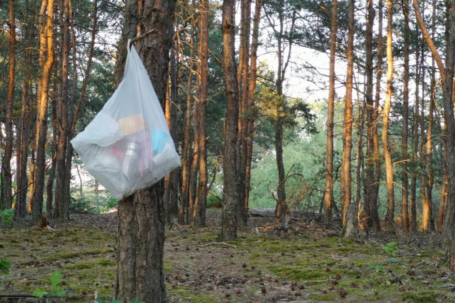 Leśnicy upominają turystów, by swoje śmieci zabierali ze sobą