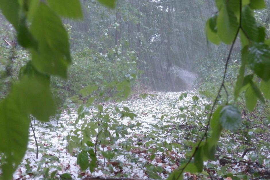 IMGW ostrzega: upał i burze z gradem w całej Polsce