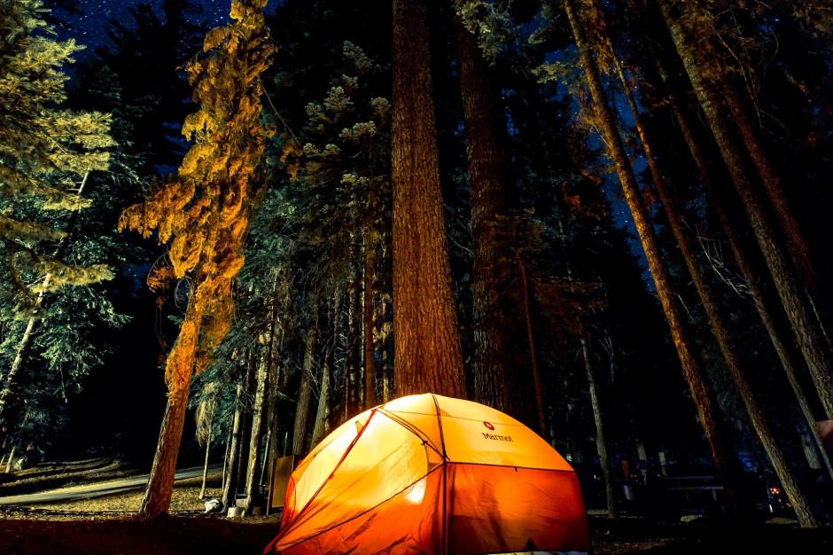 Gdzie można nocować w lesie? Oto zasady i lokalizacje