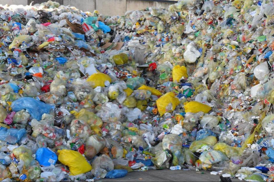 Polski paradoks - brakuje surowca do recyklingu, a miliony lądują na śmietniku