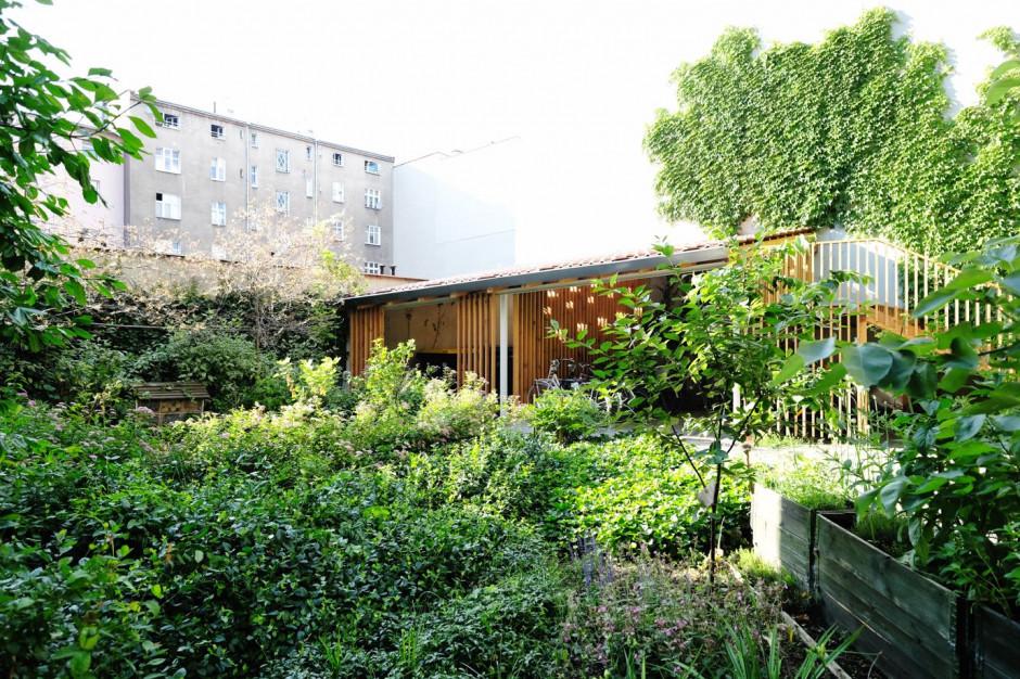Nie chcieli betonowego podwórka, więc sami zmienili je w wielki ogród. Zobacz zdjęcia