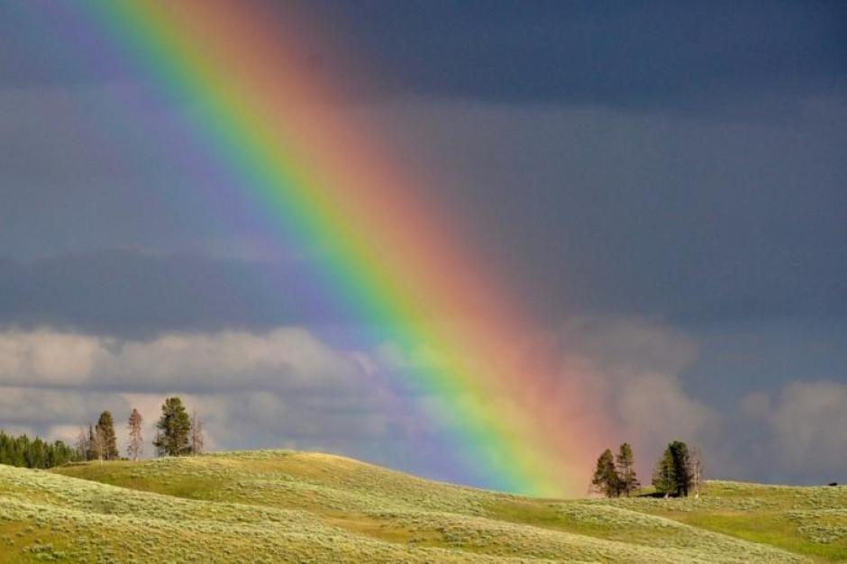 Deklaracja anty-LGBT może prowadzić do wykluczenia ze wspólnoty samorządowej