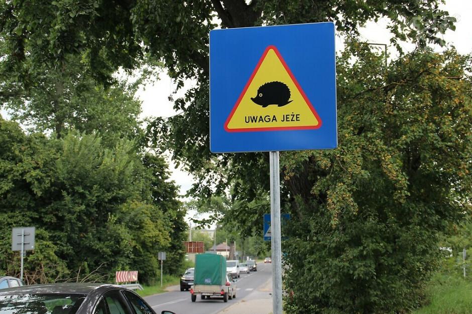 Lublin stawia nowe znaki drogowe w trosce o jeże