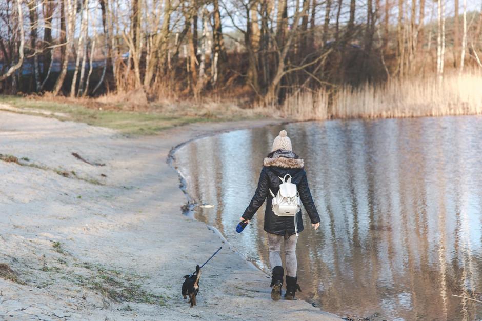 Gmina nie może zakazać wyprowadzania zwierząt na określone tereny